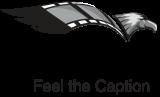 Dami Studios logo